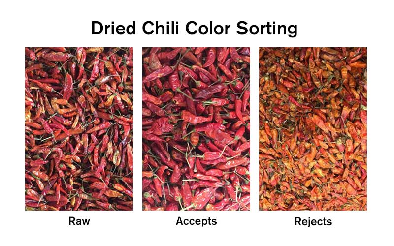 Dried Chili Color Sorting Demo.jpg